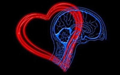 How Does Mental Health Affect the Heart? Heart Health and Mental Health
